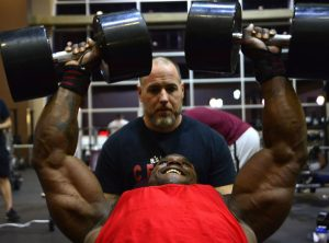 träningsprogram bygga muskler